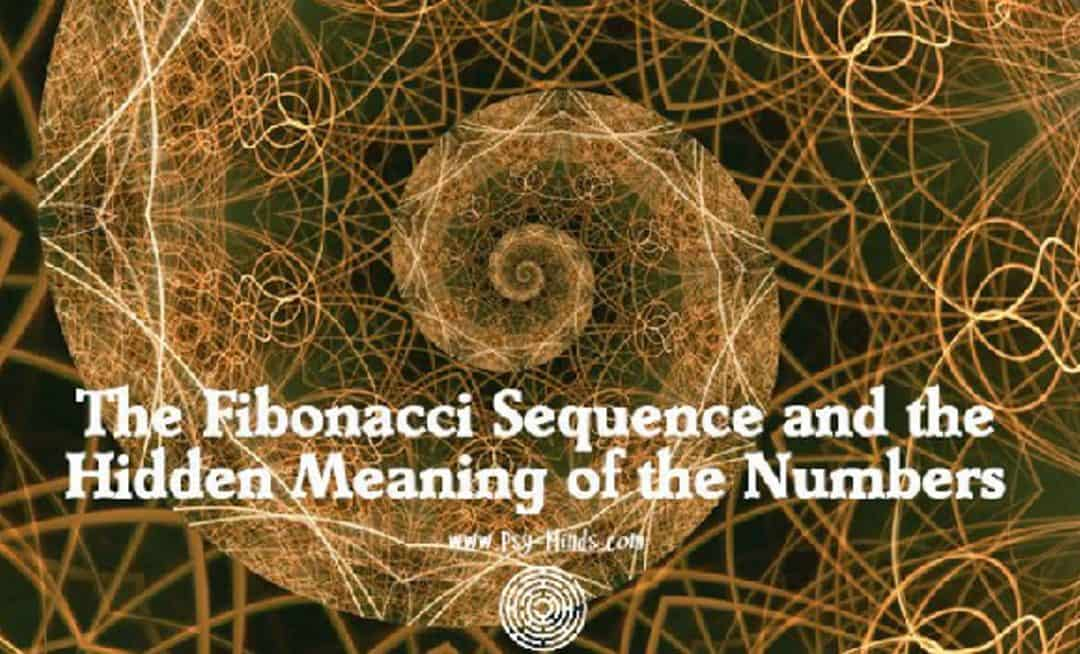 Learn Fibonacci Sequence in Trading and What the Meaning of Retracement Means